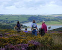Celtic Tours - Exmoor National Park