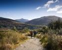 Celtic Tours - Loch Lomond / Trossachs