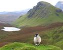 Celtic Tours - Isle of Skye